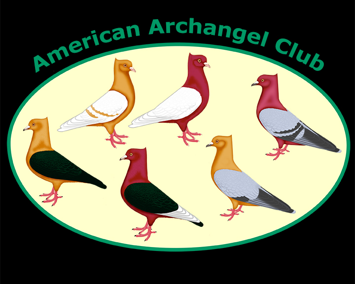https://www.christinenyland.com/wp-content/uploads/2017/11/archangellogo-1.jpg