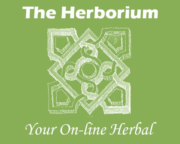 https://www.christinenyland.com/wp-content/uploads/2017/11/herborium.jpg